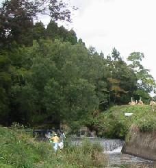 安達太良川の桜公園付近の水生生物の散策_a0087378_356289.jpg