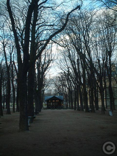 ■リュクサンブルグ公園(パリ)_a0008105_19541097.jpg