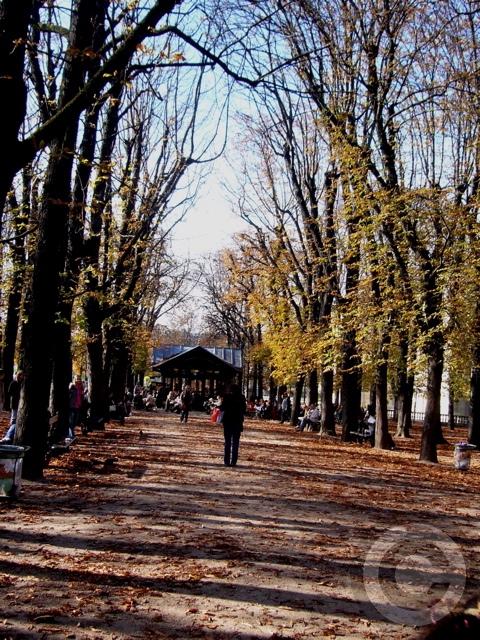 ■秋のリュクサンブルグ公園(パリPARIS)_a0008105_4591632.jpg