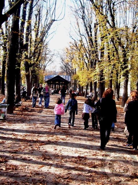 ■秋のリュクサンブルグ公園(パリPARIS)_a0008105_4594076.jpg