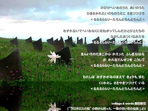 b0088524_0242550.jpg