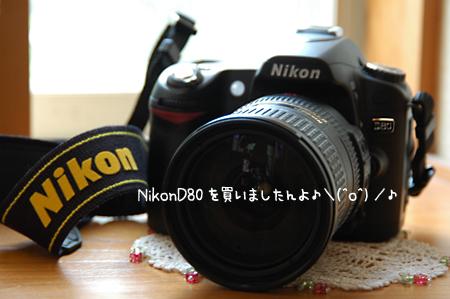 f0080530_2273644.jpg