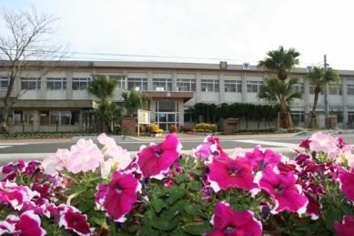 木花小学校の花の植栽のその後2_f0105533_23131980.jpg
