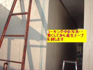 f0031037_19595187.jpg