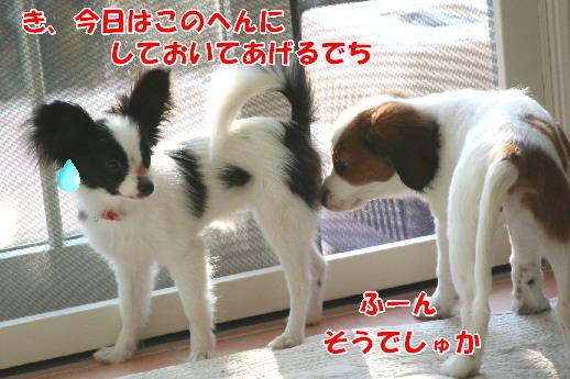 d0013149_043273.jpg