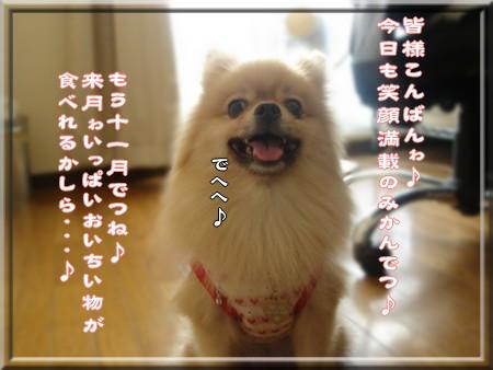 b0078073_22102430.jpg