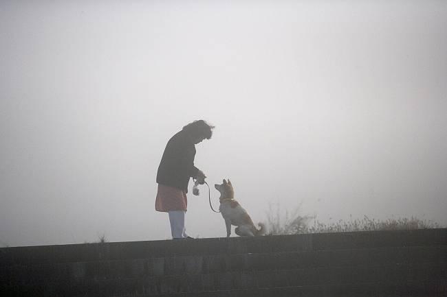 霧の日_b0074098_20285415.jpg