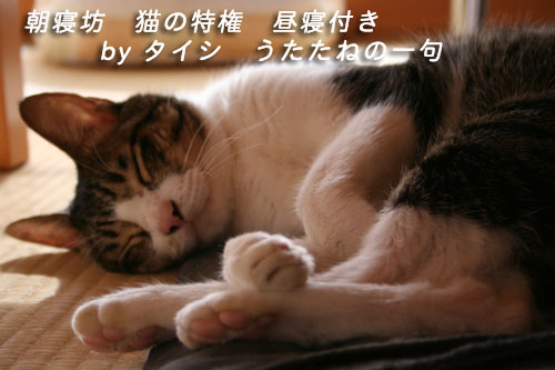 c0094821_222546.jpg