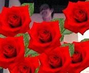 b0080064_1595591.jpg