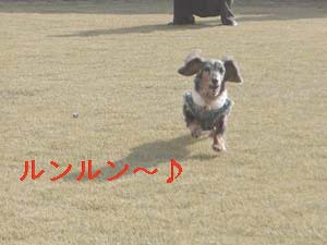 d0020869_201576.jpg