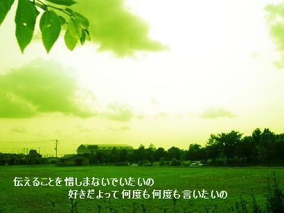 b0048413_0153172.jpg