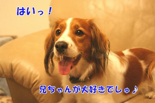 d0013149_0542019.jpg