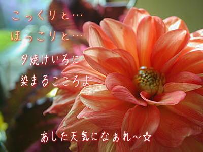 c0095663_22512659.jpg