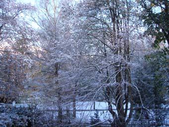 初雪。_e0103663_23393198.jpg