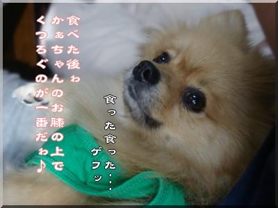 b0078073_23152264.jpg