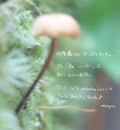 f0015514_12134298.jpg