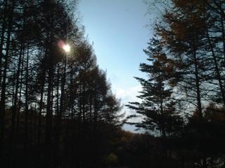 d0093655_19313764.jpg