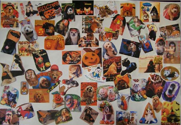 Halloween Party 記念写真♪♪_f0096569_1834774.jpg