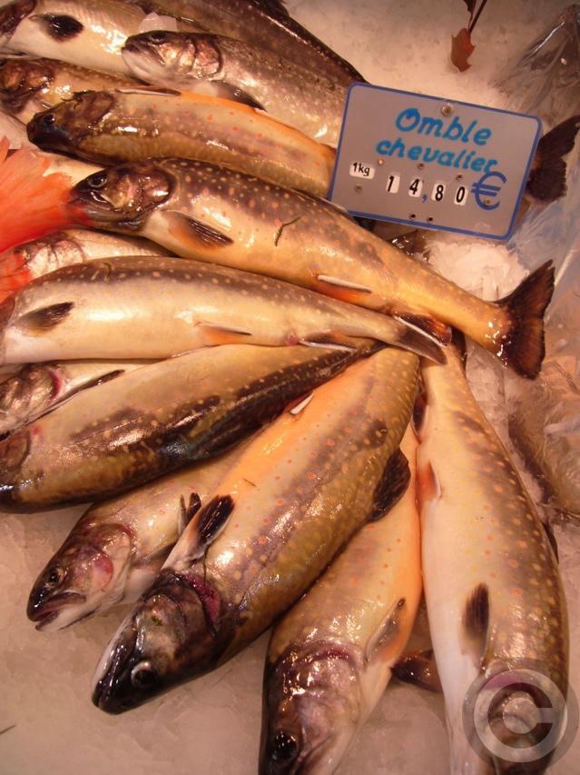 """■金曜日は\""""魚の日\""""(パリ)_a0014299_19585243.jpg"""
