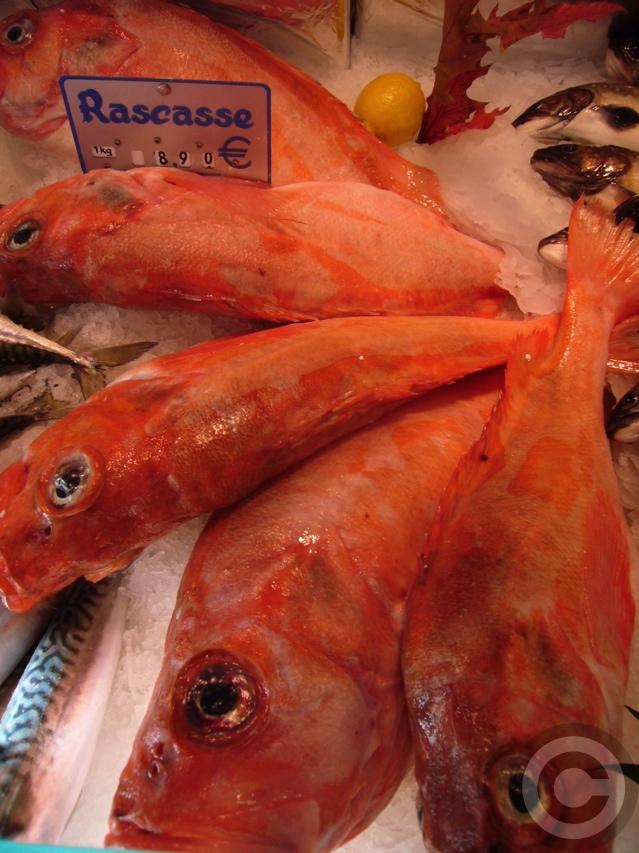 """■金曜日は\""""魚の日\""""(パリ)_a0014299_19592038.jpg"""