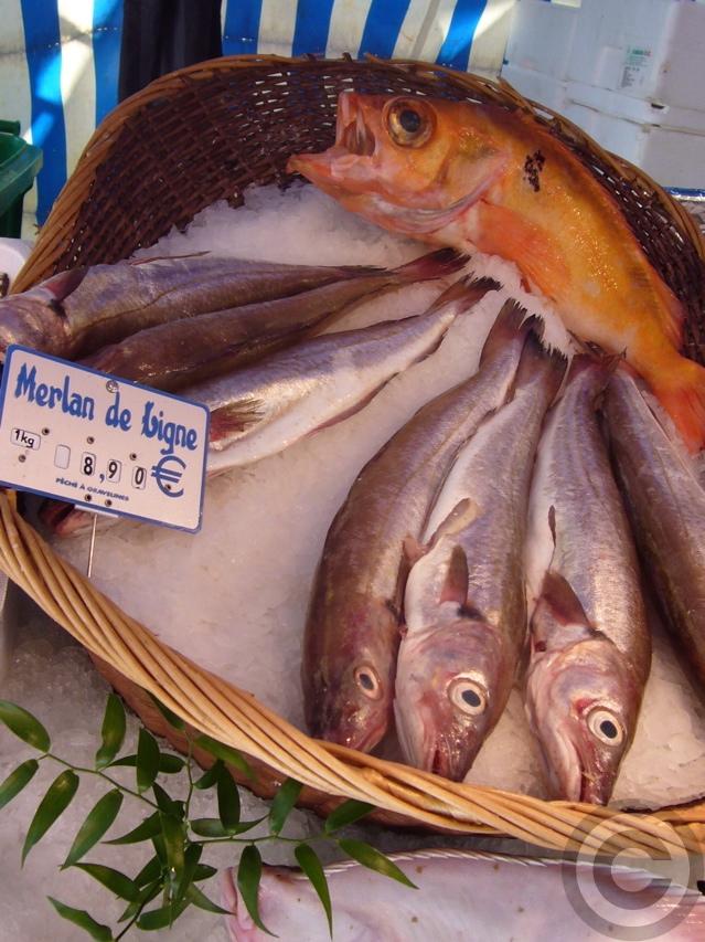"""■金曜日は\""""魚の日\""""(パリ)_a0014299_2001278.jpg"""