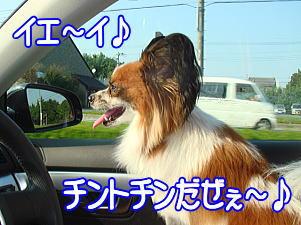 f0011845_101154.jpg