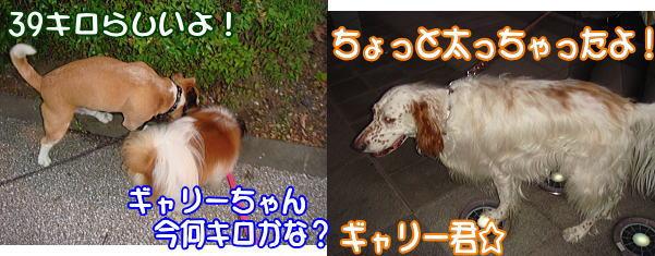 f0011845_134025.jpg