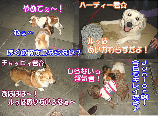 f0011845_145058.jpg