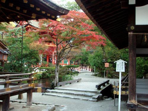 上賀茂神社_e0048413_21324413.jpg