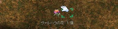 b0022623_1775133.jpg