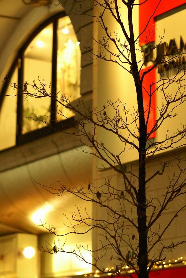 横浜元町暖簾丸出し_d0086248_22575491.jpg