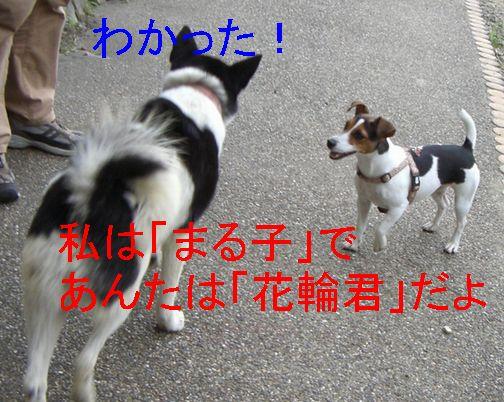 f0053952_14204495.jpg