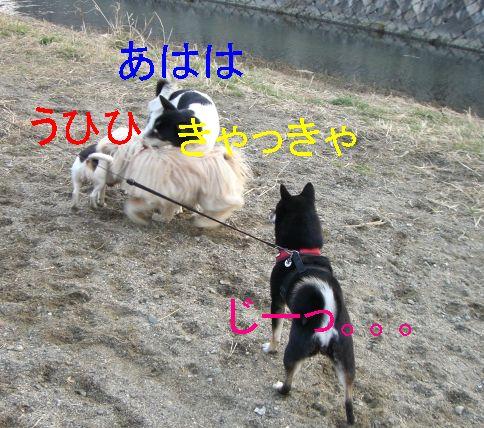 f0053952_14265021.jpg