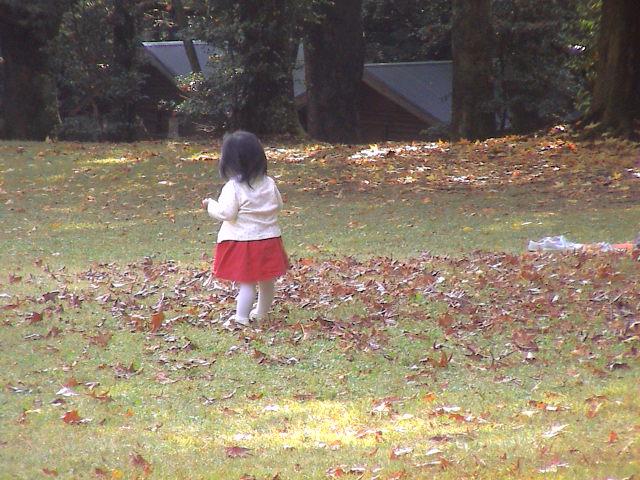 公園の秋。_e0060555_193131.jpg