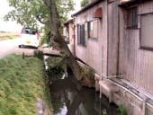 2006/8/27 日仏景観会議柳川会議プレワークショップ_b0013387_15532867.jpg