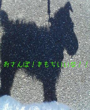 a0051402_1563992.jpg