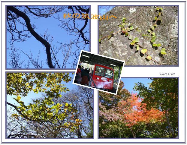 筑波山へ_c0051105_9492367.jpg