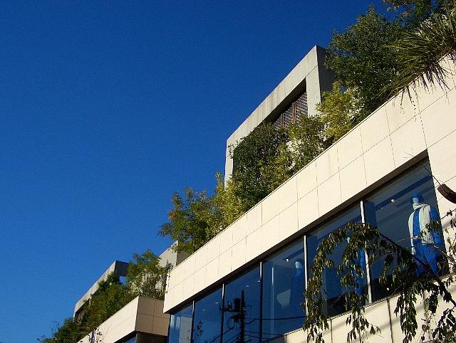 splendid blue sky and luhch!_d0083623_2123697.jpg