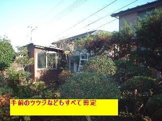 f0031037_1713471.jpg