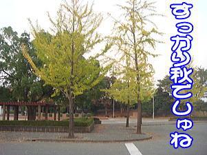 f0011845_18471183.jpg