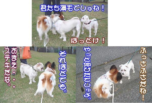 f0011845_2241047.jpg
