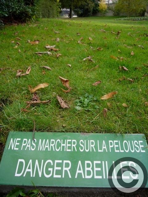 ■リュクサンブルグ公園のハチミツMIEL(PARIS)_a0014299_552421.jpg
