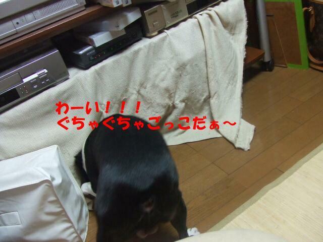 f0059334_11125660.jpg