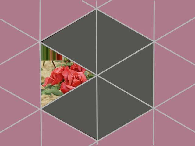 f0103534_19212624.jpg