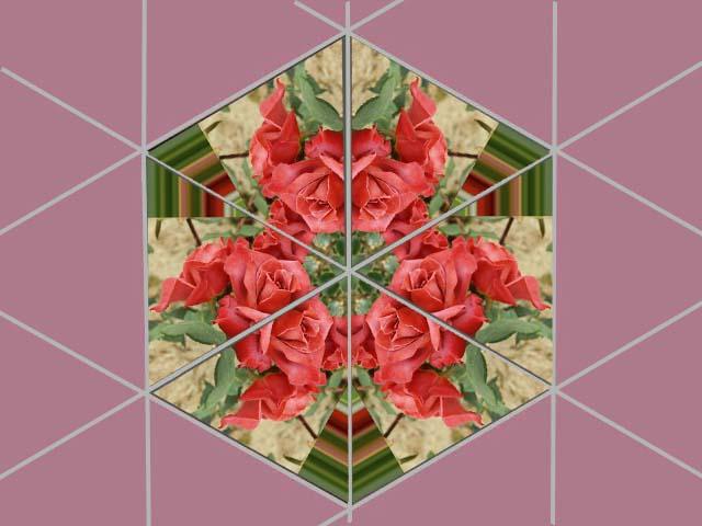 f0103534_19231362.jpg