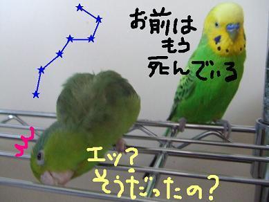 b0082757_1385658.jpg
