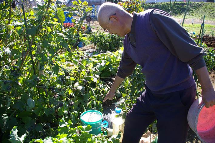 「大和市民ホームファーマー農園」を訪問(2006・11・9)_c0014967_19303590.jpg
