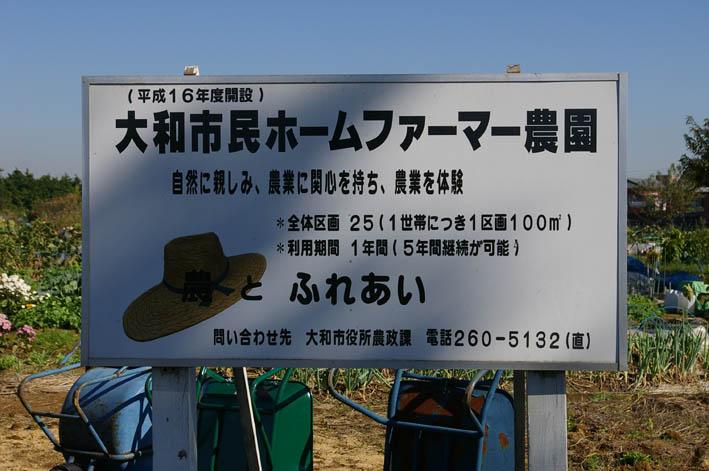 「大和市民ホームファーマー農園」を訪問(2006・11・9)_c0014967_19313578.jpg