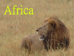 さと☆まい アフリカ旅日記