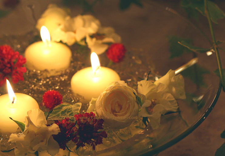 シェ松尾青山サロン様の装花 あたたかな白_a0042928_23472184.jpg